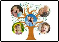 Plakát, Rodinný strom, 40x30 cm