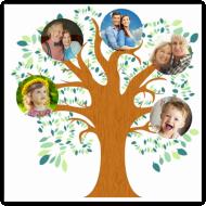 Plakát, Rodinný strom, 30x30 cm