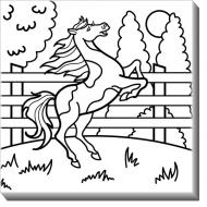 Obraz, Kůň + barvy, 30x30 cm