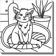 Obraz, Kočka + barvy, 30x30 cm