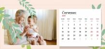 Kalendář, Nejlepší babička ve světě, 22x10 cm