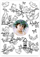 Plakát, Omalovánka - Ptáčci , 30x40 cm