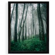 Plakát v rámu, Les, 30x40 cm