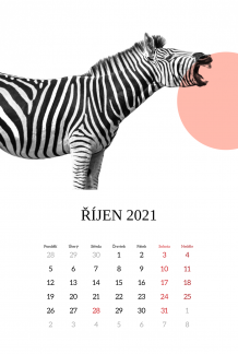 Kalendář, Zvířata, 20x30 cm