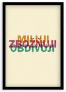 Plakát v rámu, Miluji, zbožňuji, obdivuji , 20x30 cm