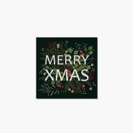 Fotopřání Merry Xmas, 14x14 cm
