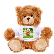 Plyšák Medvídek hnědý hebký, Tvůj projekt medvídek